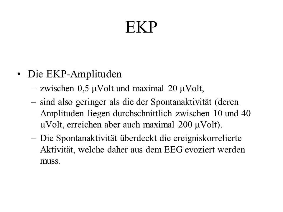 Die EKP-Amplituden –zwischen 0,5  Volt und maximal 20  Volt, –sind also geringer als die der Spontanaktivität (deren Amplituden liegen durchschnittl