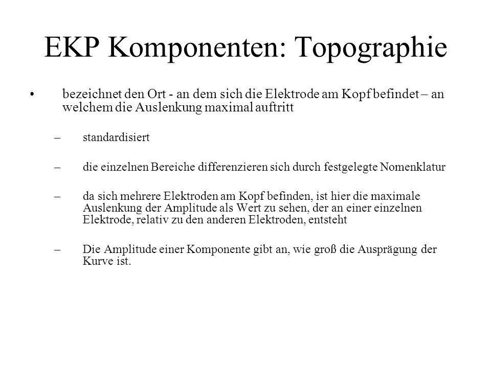 EKP Komponenten: Topographie bezeichnet den Ort - an dem sich die Elektrode am Kopf befindet – an welchem die Auslenkung maximal auftritt –standardisi