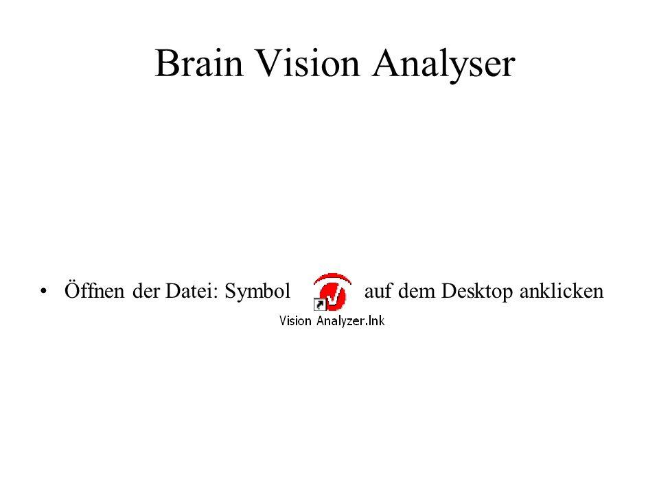 Brain Vision Analyser Öffnen der Datei: Symbol auf dem Desktop anklicken