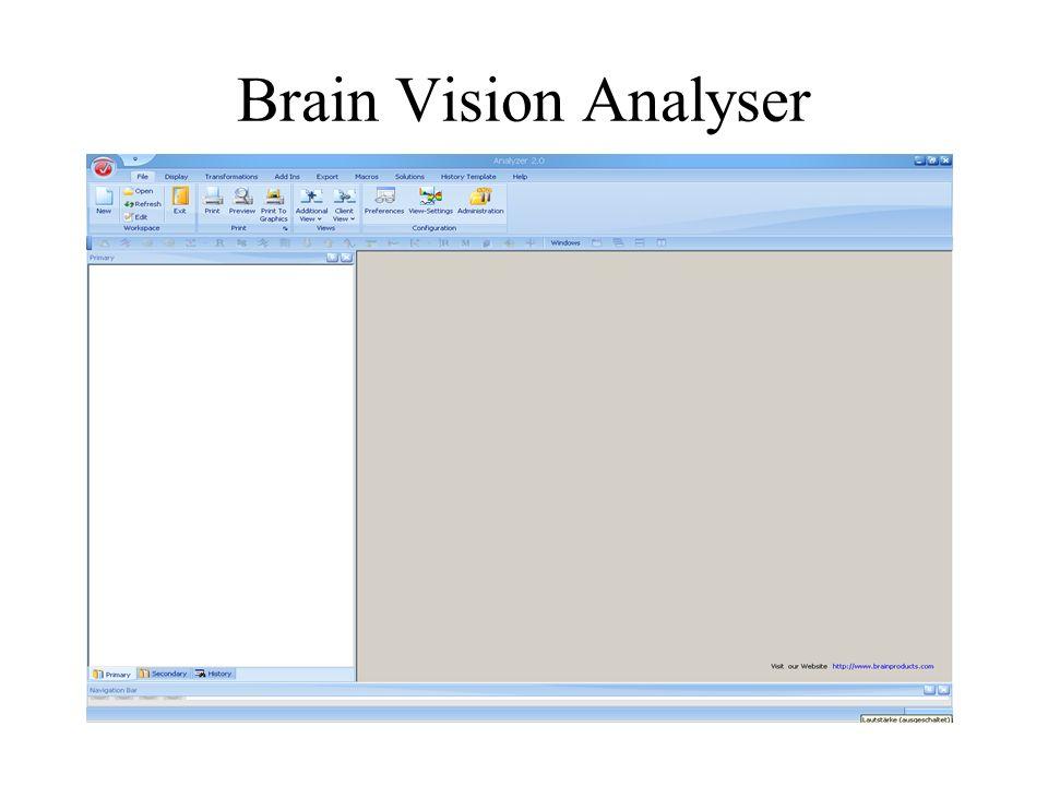 Brain Vision Analyser