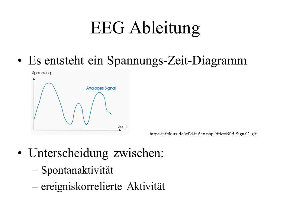 EEG Ableitung Es entsteht ein Spannungs-Zeit-Diagramm Unterscheidung zwischen: –Spontanaktivität –ereigniskorrelierte Aktivität http://infokurs.de/wik