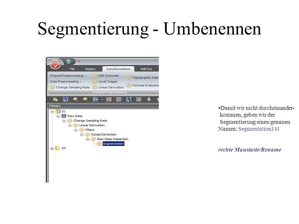 Segmentierung - Umbenennen Damit wir nicht durcheinander- kommen, geben wir der Segmentierung einen genauen Namen: Segmentation141 rechte Maustaste/Re