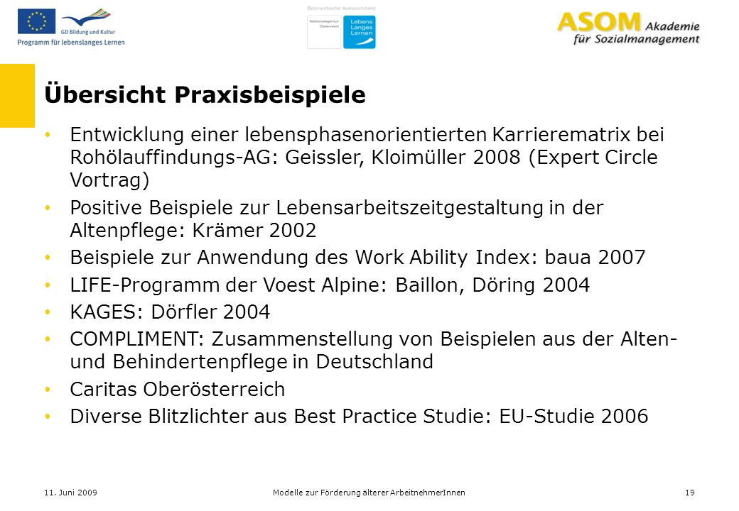 Übersicht Praxisbeispiele Entwicklung einer lebensphasenorientierten Karrierematrix bei Rohölauffindungs-AG: Geissler, Kloimüller 2008 (Expert Circle