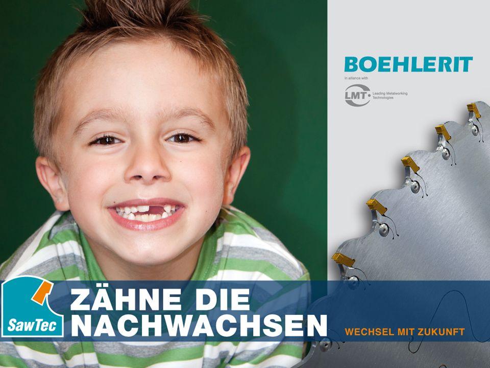 © Boehlerit GmbH & Co.KG, A - 8605 Kapfenberg SawTec Seite 20 Gerhard Melcher SawTec Direktgepresste Spanleitstufen bzw.