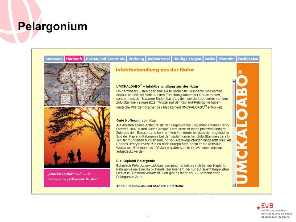Pelargonium 11