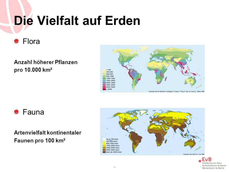3 Die Vielfalt auf Erden Flora Anzahl höherer Pflanzen pro 10.000 km² Fauna Artenvielfalt kontinentaler Faunen pro 100 km²