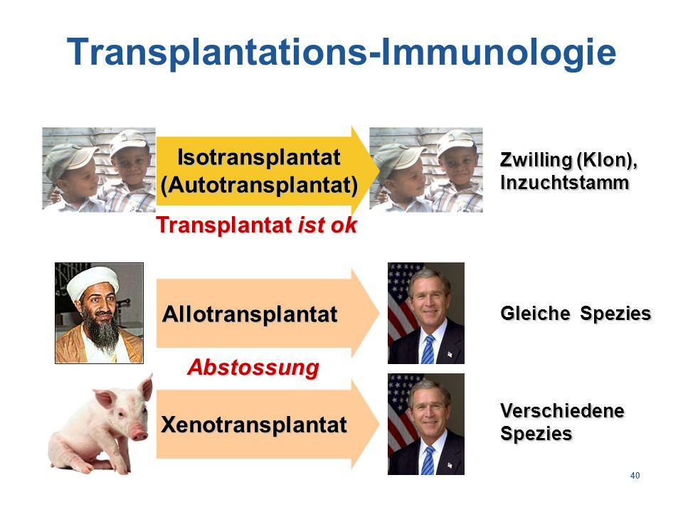 40 Isotransplantat(Autotransplantat) Allotransplantat Xenotransplantat VerschiedeneSpezies Gleiche Spezies Zwilling (Klon), Inzuchtstamm Abstossung Transplantat ist ok Transplantations-Immunologie