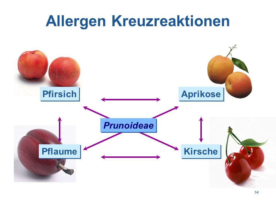54 Pfirsich Aprikose Pflaume Kirsche Prunoideae Allergen Kreuzreaktionen