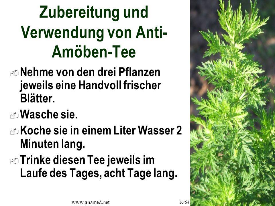 www.anamed.net 16/64 Zubereitung und Verwendung von Anti- Amöben-Tee  Nehme von den drei Pflanzen jeweils eine Handvoll frischer Blätter.