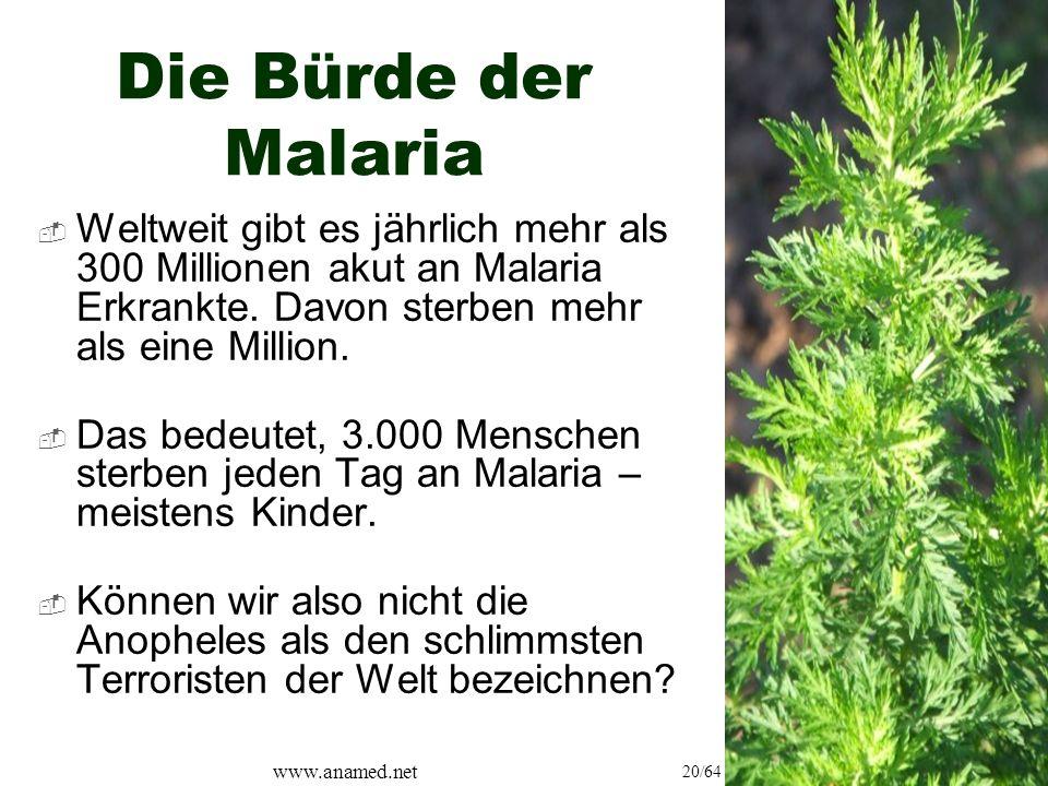 www.anamed.net 20/64 Die Bürde der Malaria  Weltweit gibt es jährlich mehr als 300 Millionen akut an Malaria Erkrankte.