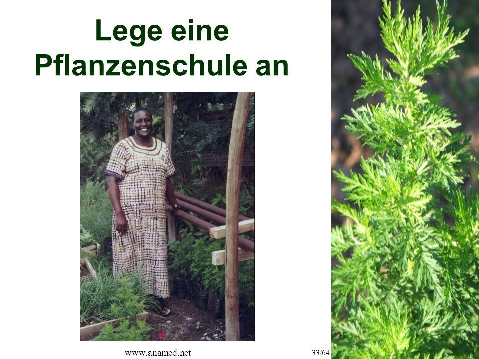 www.anamed.net 33/64 Lege eine Pflanzenschule an