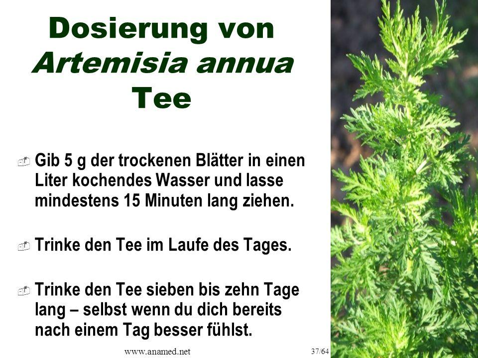 www.anamed.net 37/64 Dosierung von Artemisia annua Tee  Gib 5 g der trockenen Blätter in einen Liter kochendes Wasser und lasse mindestens 15 Minuten lang ziehen.