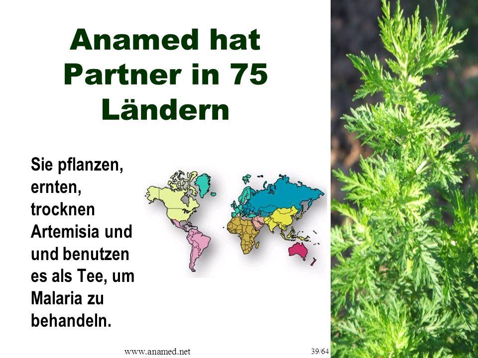 www.anamed.net 39/64 Anamed hat Partner in 75 Ländern Sie pflanzen, ernten, trocknen Artemisia und und benutzen es als Tee, um Malaria zu behandeln.