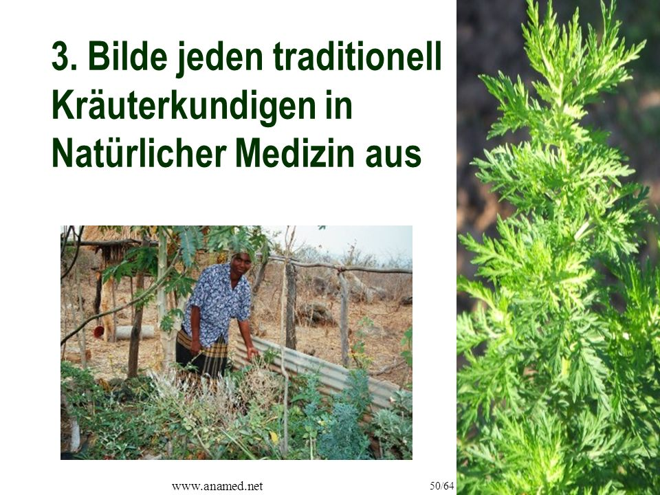 www.anamed.net 50/64 3. Bilde jeden traditionell Kräuterkundigen in Natürlicher Medizin aus