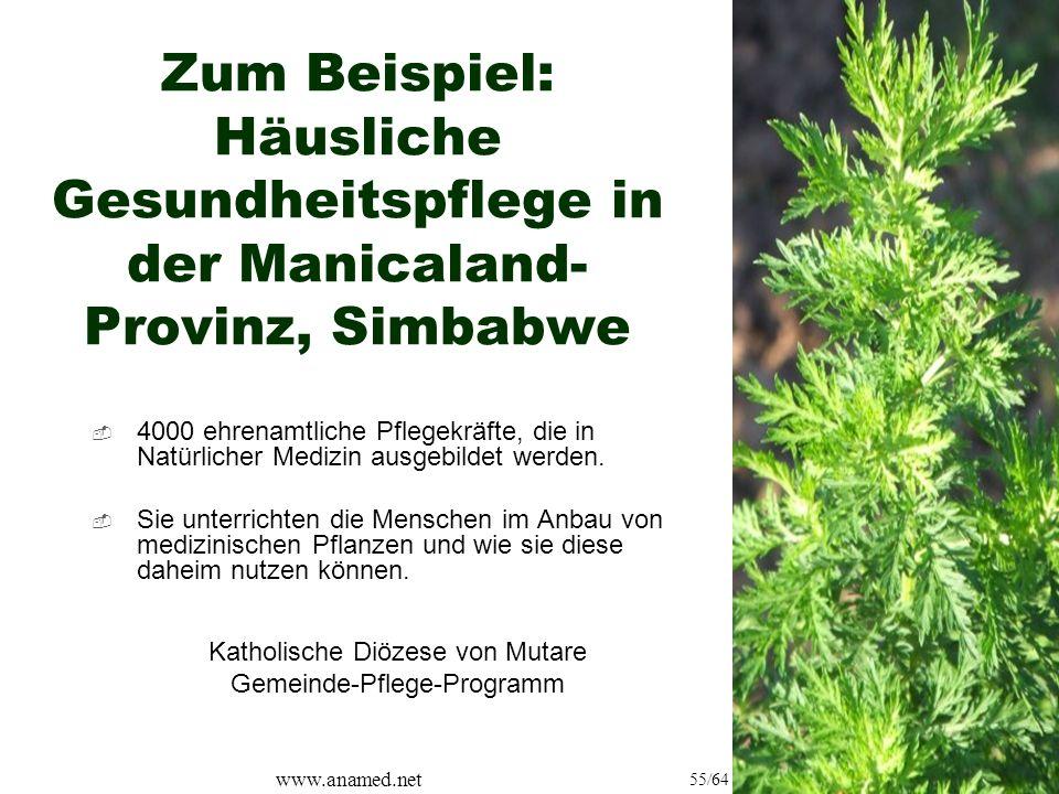 www.anamed.net 55/64 Zum Beispiel: Häusliche Gesundheitspflege in der Manicaland- Provinz, Simbabwe  4000 ehrenamtliche Pflegekräfte, die in Natürlicher Medizin ausgebildet werden.