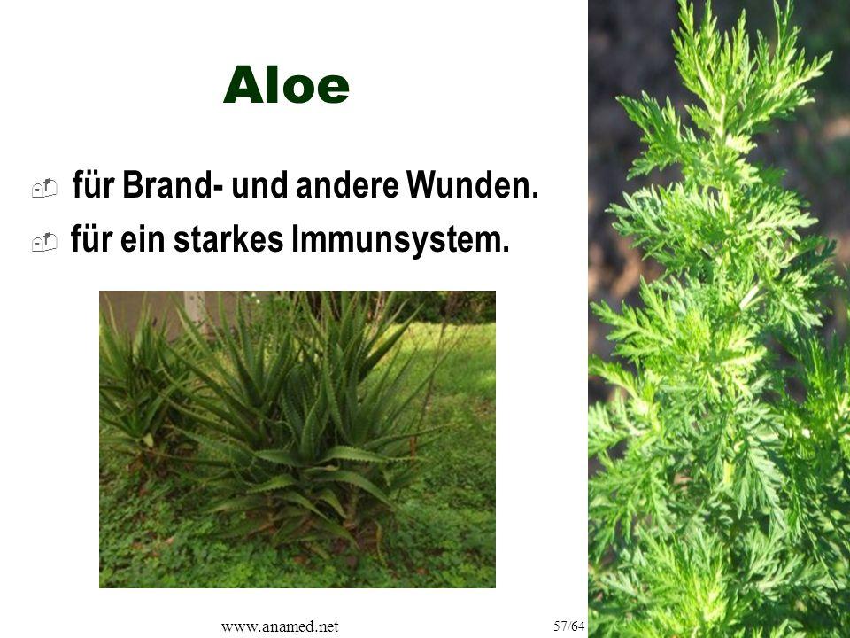 www.anamed.net 57/64 Aloe  für Brand- und andere Wunden.  für ein starkes Immunsystem.