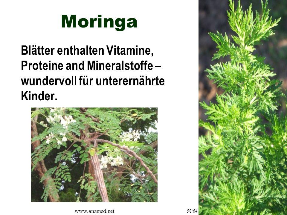 www.anamed.net 58/64 Moringa Blätter enthalten Vitamine, Proteine and Mineralstoffe – wundervoll für unterernährte Kinder.