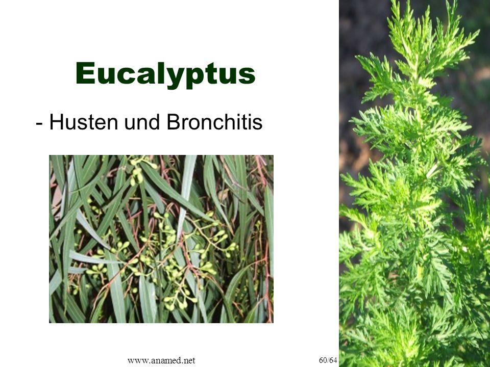 www.anamed.net 60/64 Eucalyptus - Husten und Bronchitis