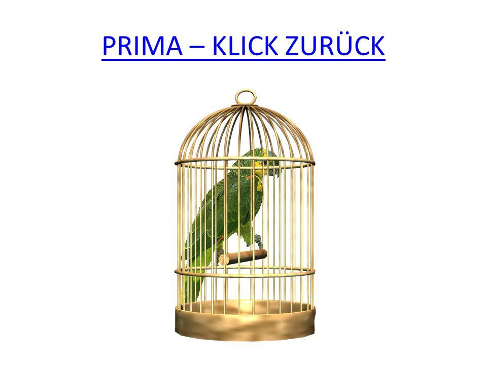 PRIMA – KLICK ZURÜCK