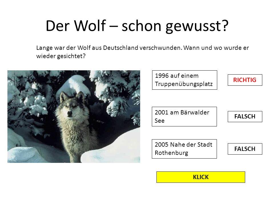 Der Wolf – schon gewusst? Lange war der Wolf aus Deutschland verschwunden. Wann und wo wurde er wieder gesichtet? 1996 auf einem Truppenübungsplatz 20