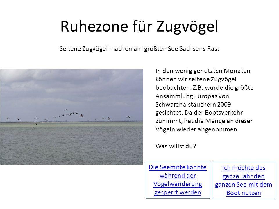 Ruhezone für Zugvögel Seltene Zugvögel machen am größten See Sachsens Rast In den wenig genutzten Monaten können wir seltene Zugvögel beobachten. Z.B.