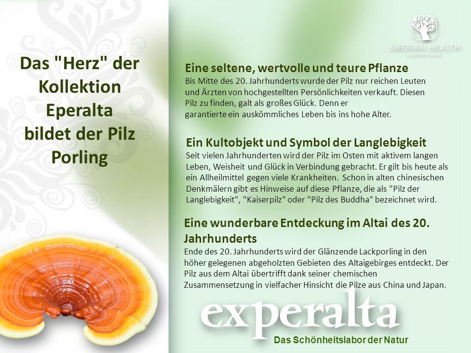 Das Schönheitslabor der Natur Das Herz der Kollektion Eperalta bildet der Pilz Porling Eine seltene, wertvolle und teure Pflanze Bis Mitte des 20.