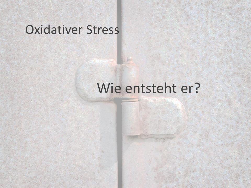 Wie entsteht er Oxidativer Stress