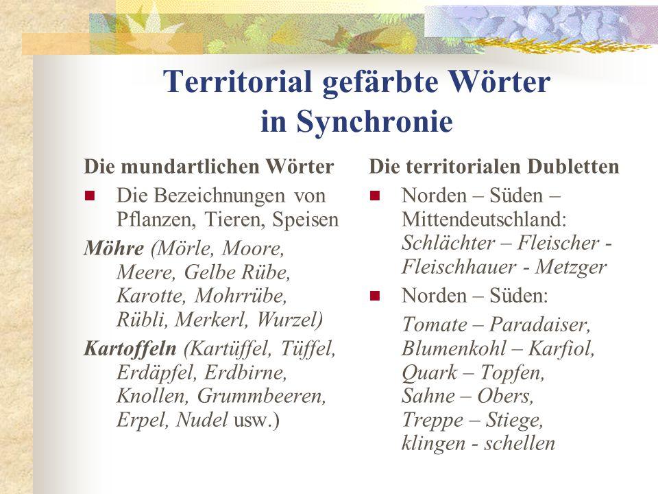 Territorial gefärbte Wörter in Synchronie Die mundartlichen Wörter Die Bezeichnungen von Pflanzen, Tieren, Speisen Möhre (Mörle, Moore, Meere, Gelbe R
