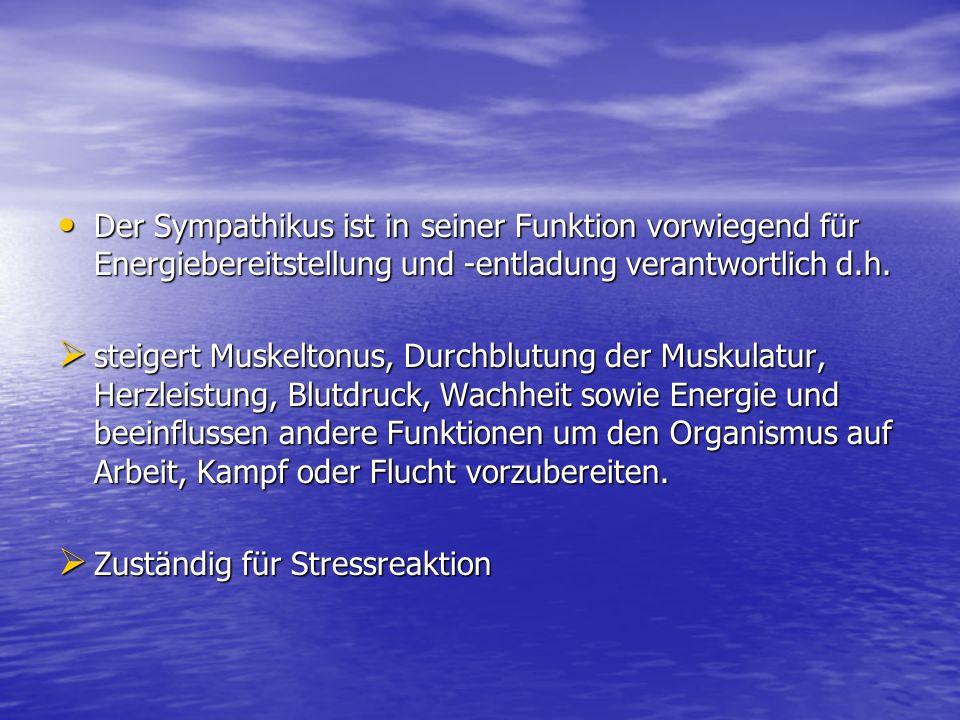 Der Sympathikus ist in seiner Funktion vorwiegend für Energiebereitstellung und -entladung verantwortlich d.h. Der Sympathikus ist in seiner Funktion