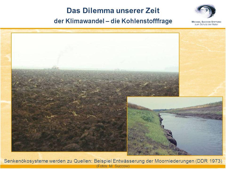 Senkenökosysteme werden zu Quellen: Beispiel Entwässerung der Moorniederungen (DDR 1973) (Fotos: M. Succow) Das Dilemma unserer Zeit der Klimawandel –