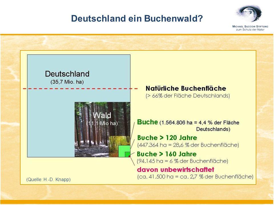 Deutschland ein Buchenwald? (Quelle: H.-D. Knapp)