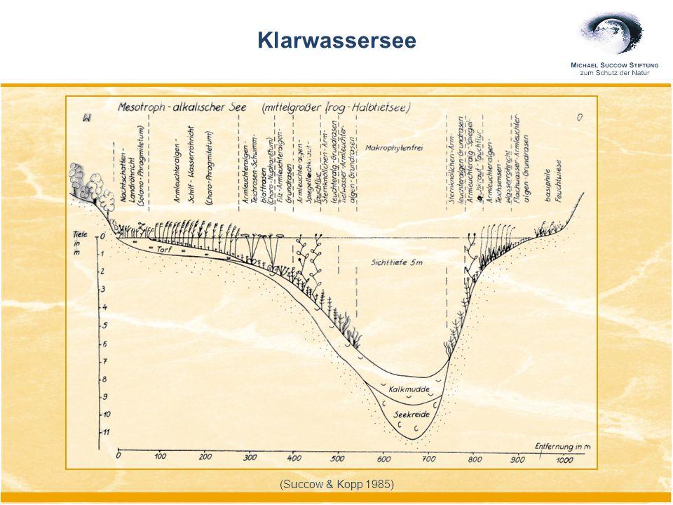 (Succow & Kopp 1985) Klarwassersee