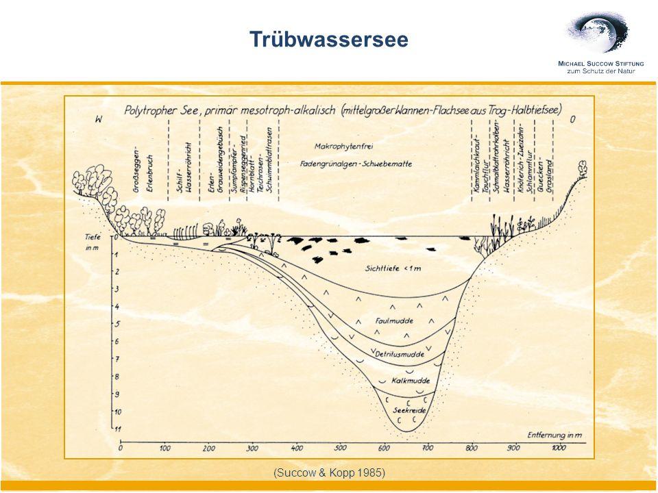 (Succow & Kopp 1985) Trübwassersee