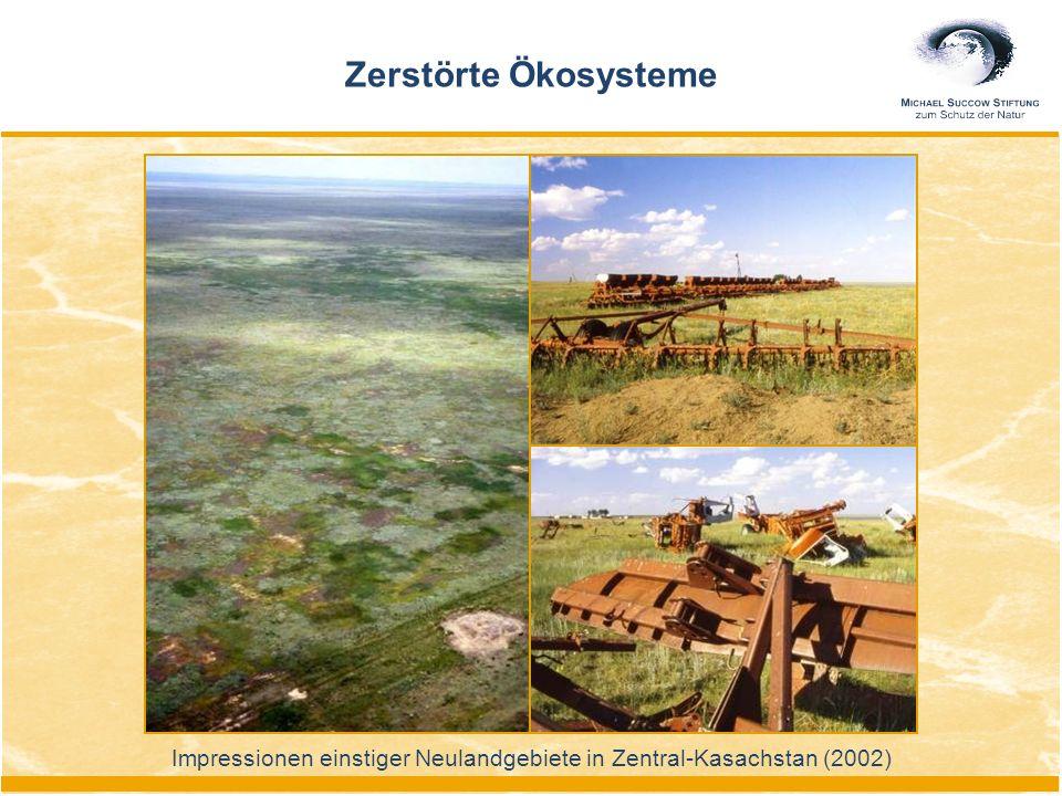 Impressionen einstiger Neulandgebiete in Zentral-Kasachstan (2002) Zerstörte Ökosysteme