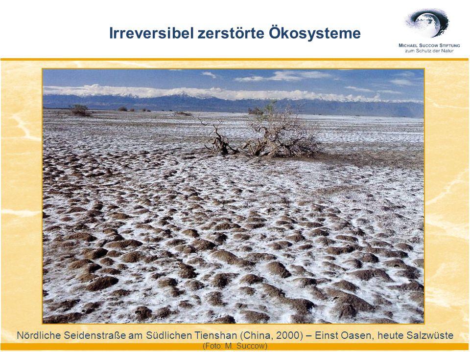 Nördliche Seidenstraße am Südlichen Tienshan (China, 2000) – Einst Oasen, heute Salzwüste (Foto: M. Succow) Irreversibel zerstörte Ökosysteme