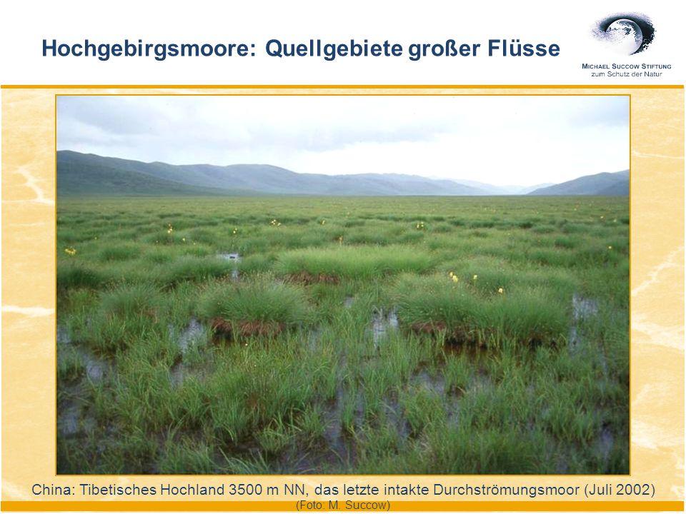 Hochgebirgsmoore: Quellgebiete großer Flüsse China: Tibetisches Hochland 3500 m NN, das letzte intakte Durchströmungsmoor (Juli 2002) (Foto: M. Succow