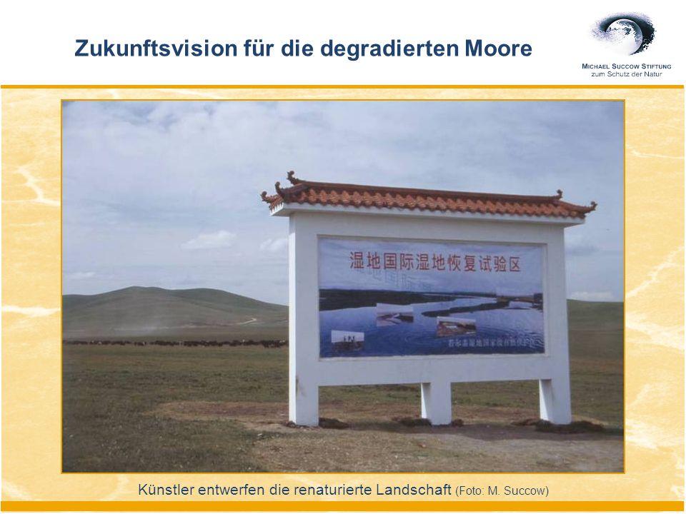Künstler entwerfen die renaturierte Landschaft (Foto: M. Succow) Zukunftsvision für die degradierten Moore