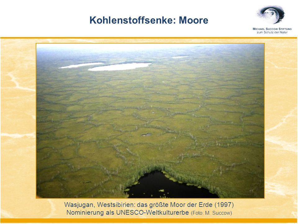 Kohlenstoffsenke: Moore Wasjugan, Westsibirien: das größte Moor der Erde (1997) Nominierung als UNESCO-Weltkulturerbe (Foto: M. Succow)
