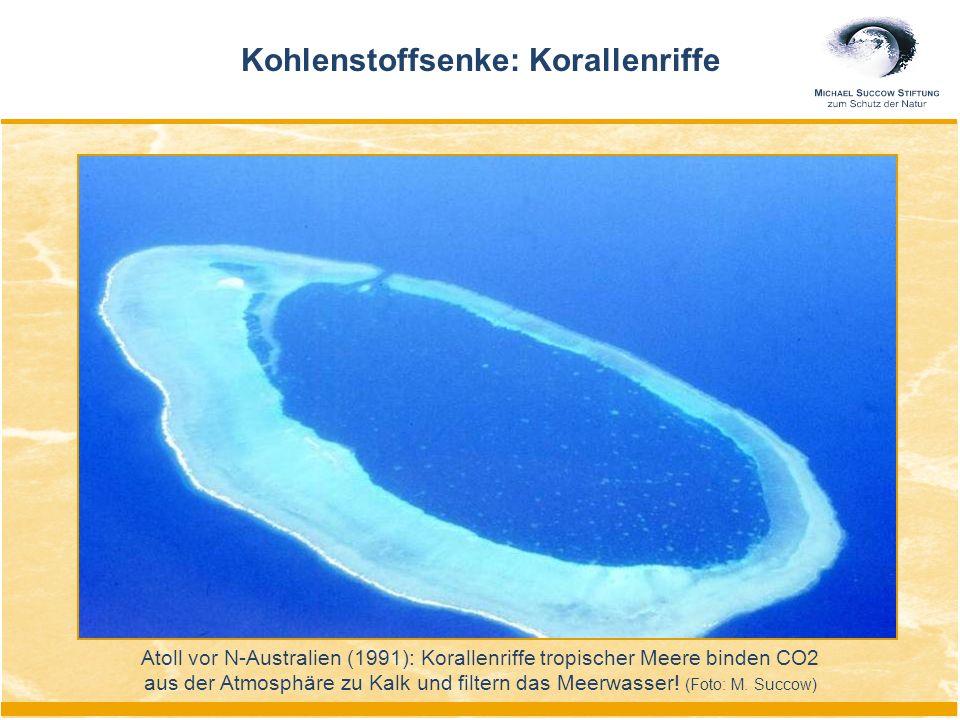 Atoll vor N-Australien (1991): Korallenriffe tropischer Meere binden CO2 aus der Atmosphäre zu Kalk und filtern das Meerwasser.