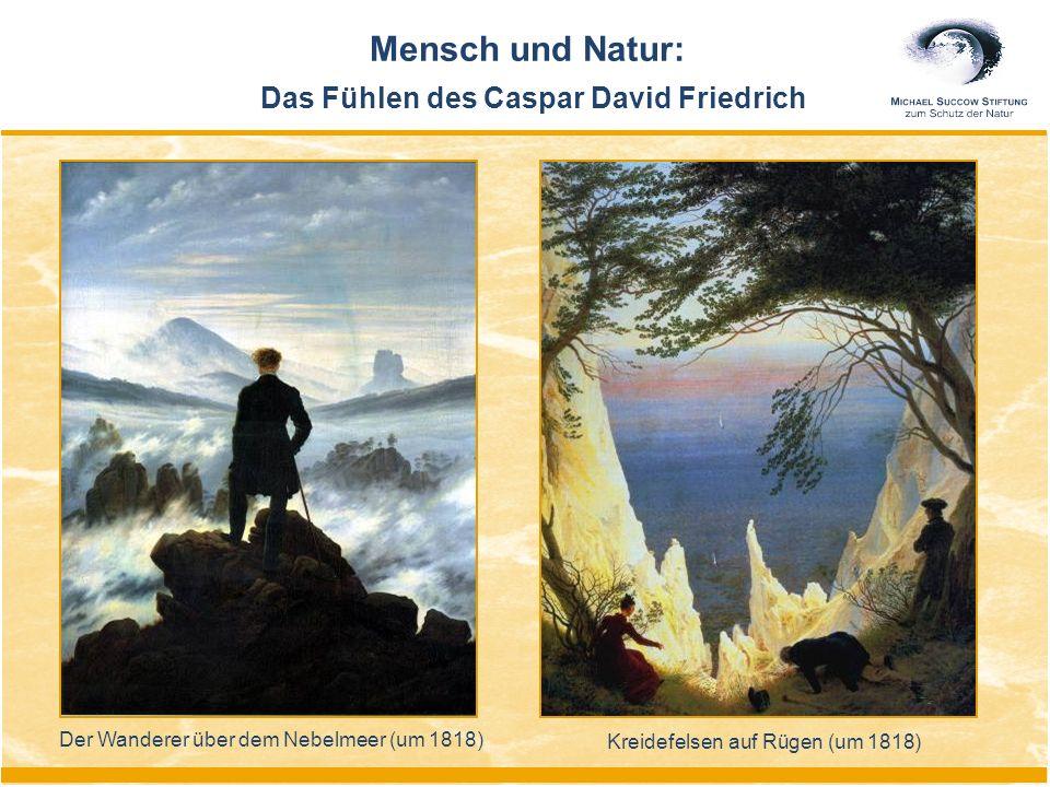 Mensch und Natur: Das Fühlen des Caspar David Friedrich Der Wanderer über dem Nebelmeer (um 1818) Kreidefelsen auf Rügen (um 1818)