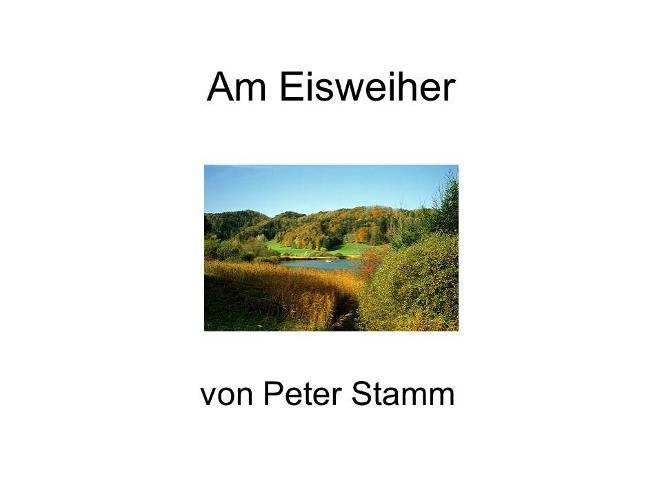 Am Eisweiher von Peter Stamm