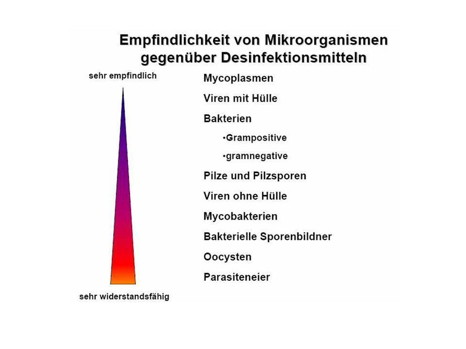 Die Wirksamkeit der Desinfektion wird beeinflusst durch Organische Beläge (Eiweißfehler) –  Einwirkdauer (Menge der Gebrauchslösung pro m2)  Art und Vielfalt der Keime  Konzentration der Gebrauchslösung  Materialtemperatur ( Kältefehler)