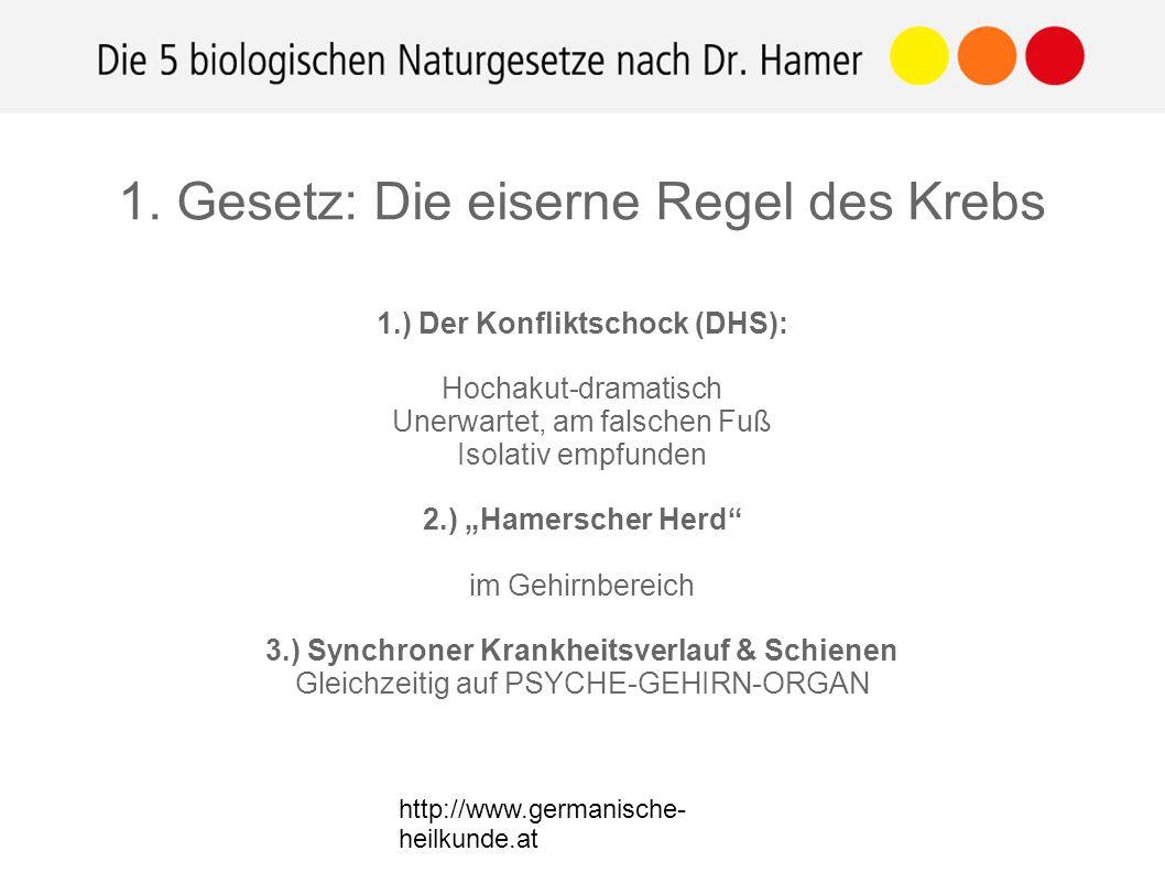 """http://www.germanische- heilkunde.at 1.) Der Konfliktschock (DHS): Hochakut-dramatisch Unerwartet, am falschen Fuß Isolativ empfunden 2.) """"Hamerscher Herd im Gehirnbereich 3.) Synchroner Krankheitsverlauf & Schienen Gleichzeitig auf PSYCHE-GEHIRN-ORGAN 1."""