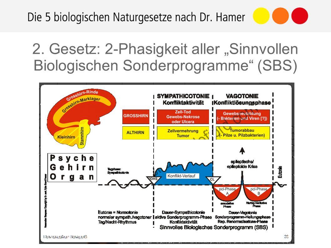 """http://www.germanische- heilkunde.at 1.) Der Konfliktschock (DHS): Hochakut-dramatisch Unerwartet, am falschen Fuß Isolativ empfunden 2.) """"Hamerscher Herd im Gehirnbereich 3.) Synchroner Krankheitsverlauf & Schienen 2."""
