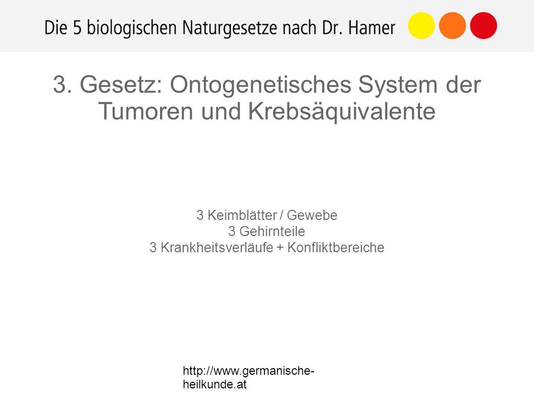 http://www.germanische- heilkunde.at 3. Gesetz: Ontogenetisches System der Tumoren und Krebsäquivalente 3 Keimblätter / Gewebe 3 Gehirnteile 3 Krankhe