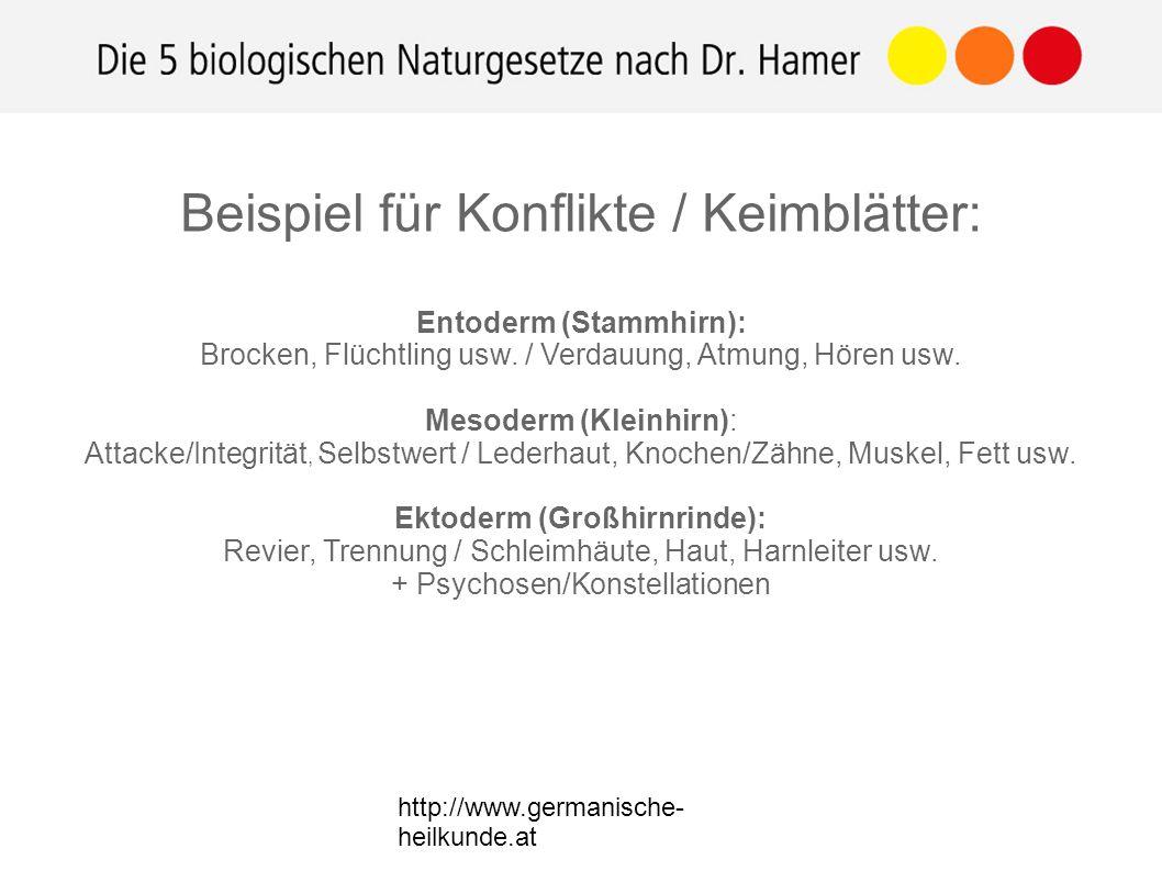 Beispiel für Konflikte / Keimblätter: Entoderm (Stammhirn): Brocken, Flüchtling usw.