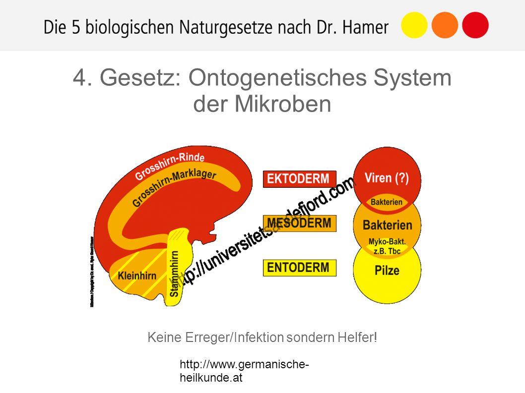 http://www.germanische- heilkunde.at Keine Erreger/Infektion sondern Helfer! 4. Gesetz: Ontogenetisches System der Mikroben