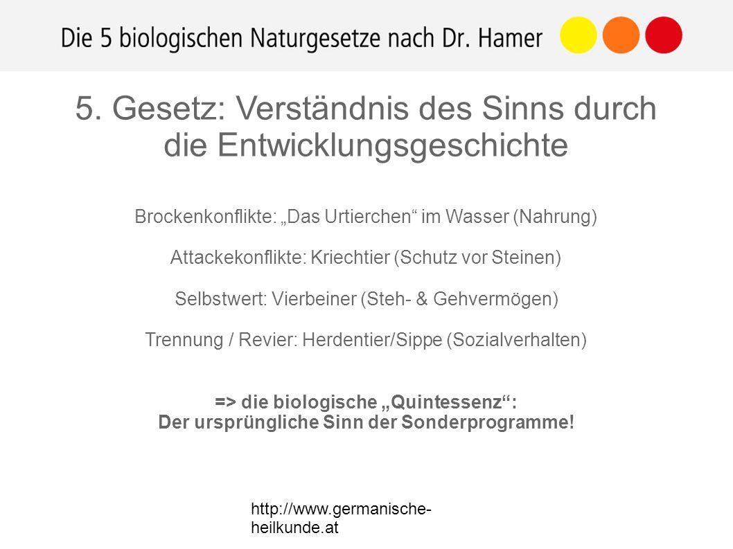 """http://www.germanische- heilkunde.at Brockenkonflikte: """"Das Urtierchen im Wasser (Nahrung) Attackekonflikte: Kriechtier (Schutz vor Steinen) Selbstwert: Vierbeiner (Steh- & Gehvermögen) Trennung / Revier: Herdentier/Sippe (Sozialverhalten) => die biologische """"Quintessenz : Der ursprüngliche Sinn der Sonderprogramme."""