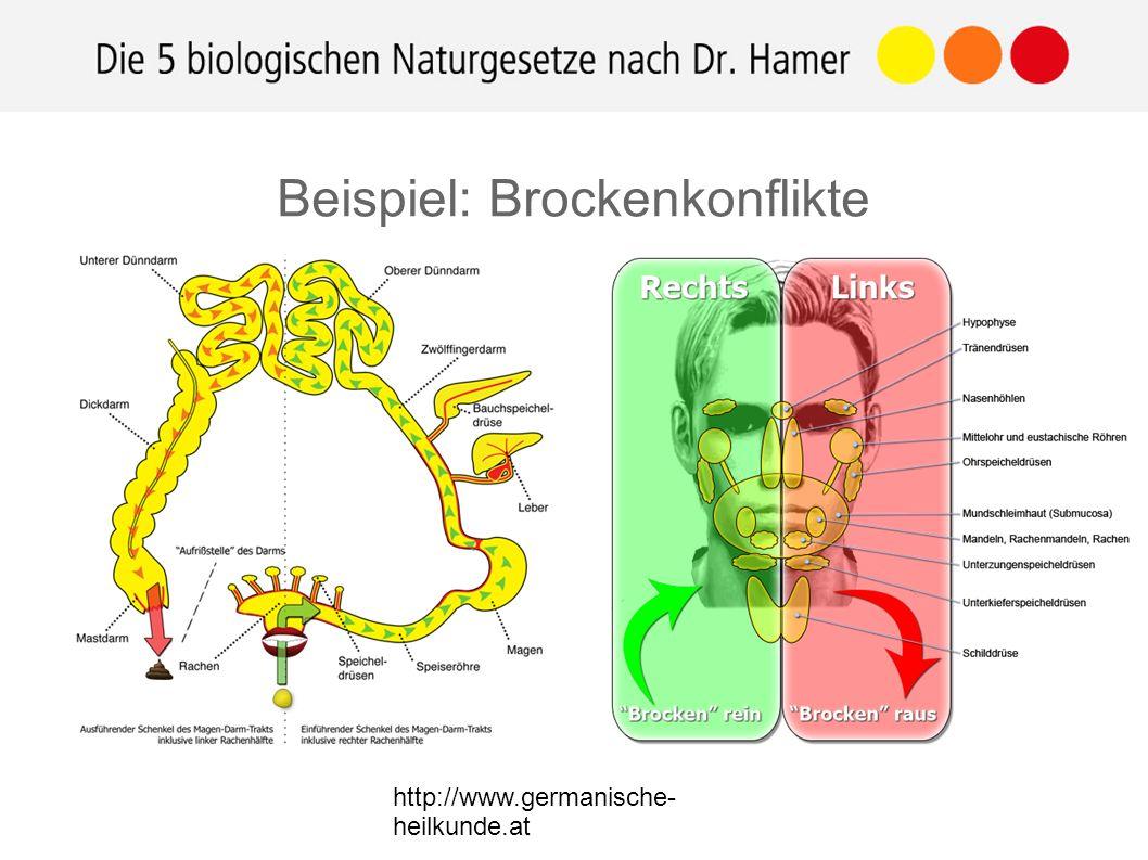 http://www.germanische- heilkunde.at Beispiel: Brockenkonflikte