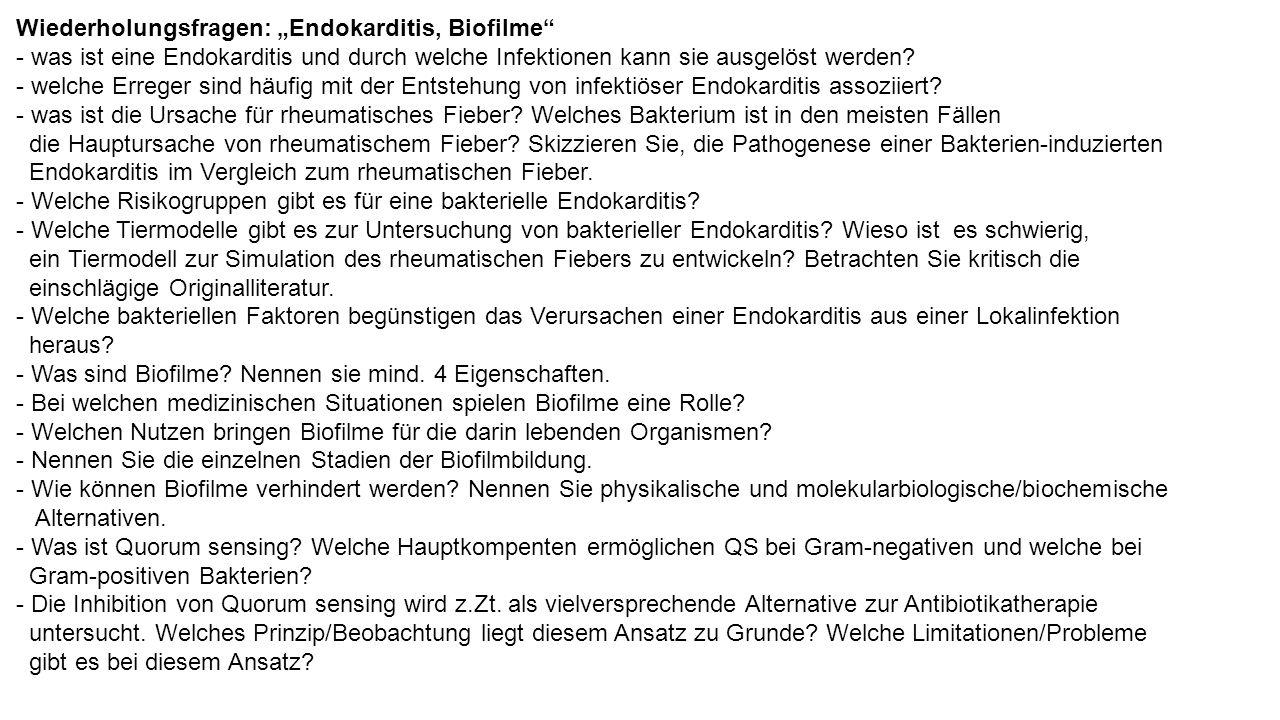 """Wiederholungsfragen: """"Endokarditis, Biofilme - was ist eine Endokarditis und durch welche Infektionen kann sie ausgelöst werden."""